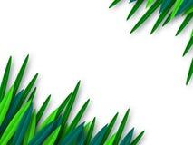 Foglie verdi tagliate di carta di stile isolate su bianco illustrazione di stock