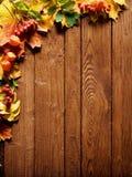 foglio del bordo di autunno Immagine Stock Libera da Diritti