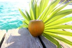 Foglio della palma del cocktail delle noci di cocco nei Caraibi Fotografia Stock Libera da Diritti