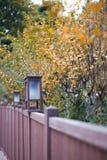 Foglio di autunno Fotografie Stock