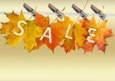 Foglio di autunno da vendere Fotografia Stock Libera da Diritti