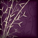 Foglio di bambù Fotografie Stock