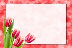 Foglio di carta ed i fiori immagine stock libera da diritti