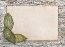 Foglio di carta invecchiato e le foglie asciutte della baia Immagini Stock