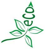Foglio di Eco Immagini Stock