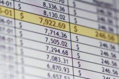 Foglio elettronico finanziario Fotografia Stock