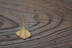 Foglio su legno Fotografia Stock