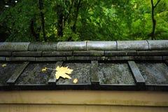 Foglio sul tetto di stile giapponese Fotografie Stock