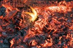 Fogo bonito com carvões de incandescência brilhantes Imagem de Stock