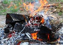 Fogo e carvões do acampamento imagem de stock