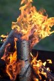 Fogo com chamas Fotografia de Stock Royalty Free