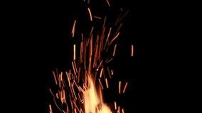 Fogo da gl?ria do pacote do fogo real video estoque