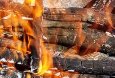 Fogo da madeira Foto de Stock
