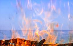 Fogo da madeira na costa Imagens de Stock
