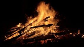 Fogo da queimadura com madeira no acampamento da praia filme
