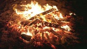 Fogo da queimadura com madeira no acampamento da praia video estoque