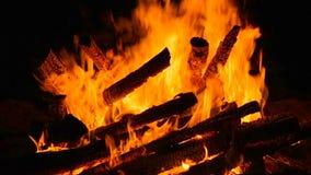 Fogo de acampamento de queimadura do close-up na noite Movimento lento, câmera de alta velocidade vídeos de arquivo