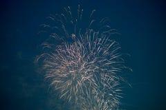 Fogo de artifício Foto de Stock