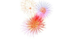 fogo de artifício isolado na celebração branca ha do fogo de artifício do fundo Imagem de Stock