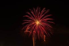 Fogo de artifício no céu escuro à celebração fotos de stock