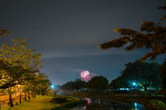 Fogo de artifício no parque com jardim e fonte Imagens de Stock