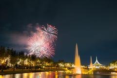 Fogo de artifício no parque com jardim e fonte Fotografia de Stock Royalty Free
