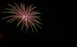 Fogo de artifício verde e vermelho dobro do starburst contra um céu preto no quarto de julho imagens de stock royalty free
