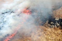 Fogo de Bush Imagem de Stock