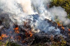 Fogo de morte Smouldering do smokey Imagens de Stock