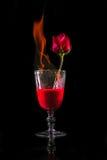 Fogo de Rosa no vidro de vinho Imagem de Stock Royalty Free