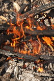 Fogo do acampamento de Burnig Fotos de Stock Royalty Free
