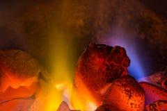 Fogo do carvão vegetal Fotos de Stock