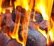 Fogo e carvões Fotografia de Stock Royalty Free