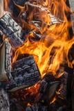 Fogo e carvões de madeira imagem de stock royalty free