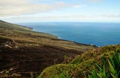 Fogo, eine vulkanische Oase Stockfoto
