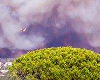 Fogo em Vitrolles, o 10 de agosto de 2016 Fotos de Stock
