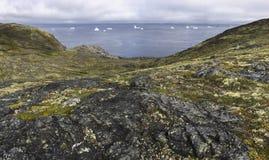 Fogo Island coastline with icebergs Royalty Free Stock Photos