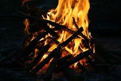 Fogo na floresta Imagem de Stock Royalty Free