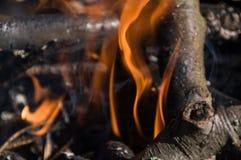 Fogo no acampamento bonfire fotos de stock