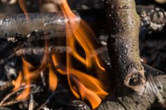 Fogo no acampamento bonfire fotografia de stock royalty free