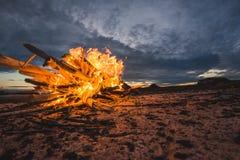 Fogo no mar Fotografia de Stock