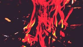 Fogo sob a luz infra-vermelha Fundo filme