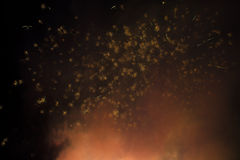 Fogos-de-artifício Imagens de Stock
