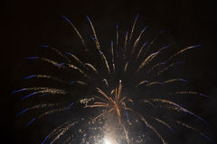 Fogos-de-artifício azuis e brancos Fotos de Stock