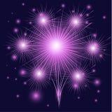 Fogos-de-artifício bonitos. Imagens de Stock