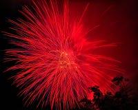 Fogos-de-artifício bonitos na noite Fotos de Stock Royalty Free