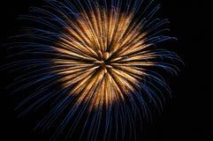 Fogos-de-artifício brilhantemente coloridos Imagem de Stock Royalty Free