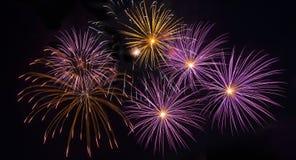 Fogos-de-artifício coloridos Foto de Stock Royalty Free