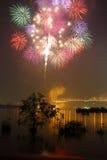 Fogos-de-artifício coloridos Fotografia de Stock