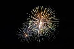 Fogos-de-artifício coloridos abstratos com várias cores em fundos escuros da noite Foto de Stock Royalty Free